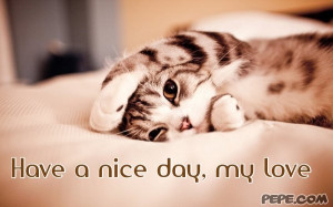 Have a nice day, my love
