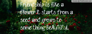Friendship is like a flower, It starts from a seed and grows to some ...