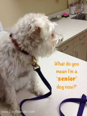 Wordless Wednesday – we all get old