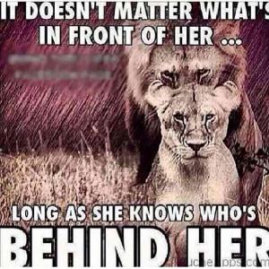 Gotta a Lion King? Lol