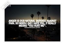 """... When I Say I Hate You. It Really Means """"You Hurt Me"""" ~ Love Quote"""