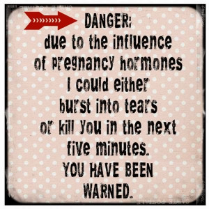 Danger Being Pregnant 43