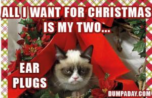 Grumpy Cat Christmas Quotes