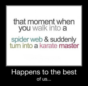 That Moment When you Walk Into A Spider Web & Suddenly Turn Into A ...