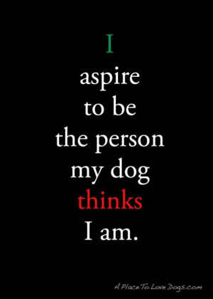 funny quotes, be the person your dog thinks you are