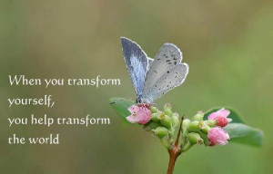 Butterfly Transformation Quotes