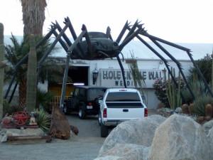 Volkswagen Beetle Spider...