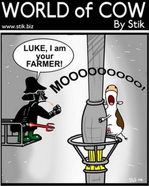 funny-star-wars-pictures