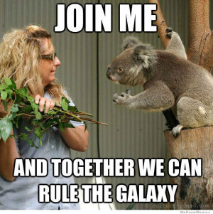 Supervillain Koala – Join me and together we can rule the galaxy