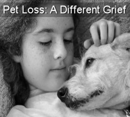 different grief helping you and your children with pet loss pet ...