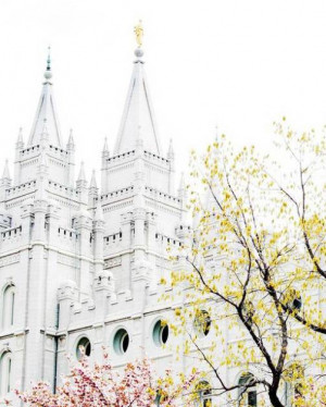 Mormon Temple Salt Lake City (Best Honeymoon Destinations In USA) 8