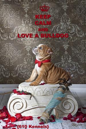 Funny English Bulldog Quotes English bulldog, bulldogs