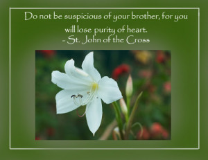 ... not be suspicious of your brother, for you will lose purity of heart