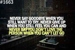 Never Say Goodbye When You Still Want to Try,Never Give Up When You ...