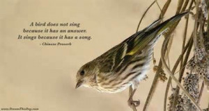 Bird Does Not Sing Because It Has An Answer It Sings Because It Has ...