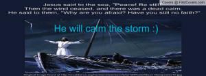 jesus_calming_the_storm-880384.jpg?i