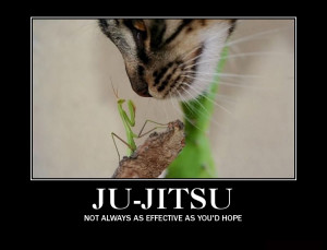 Related Pictures funny jiu jitsu quotes