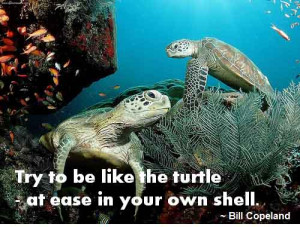 "... be like the turtle – at ease in your own shell."" – Bill Copeland"