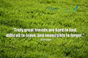 Truly great friends are hard to find, difficult to leave, and ...