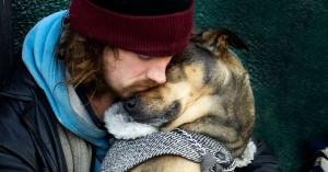 Homeless pets.