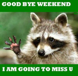 Good bye weekend, I am going to miss you