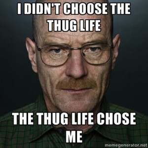 20 Best 'I Didn't Choose The Thug Life' Memes