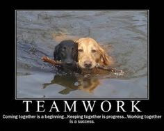 teamwork more daily dogs dogs quotes fun pix teamwork photo teamwork ...