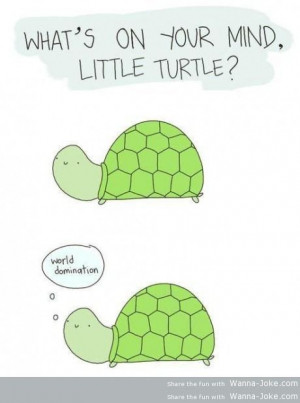 pics funny pictures pure evil turtles leave a reply ninja turtles art