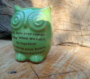 Owl Winnie the pooh quote on spring green friendship