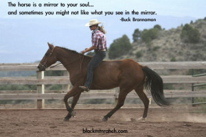 Horse Quotes Funny