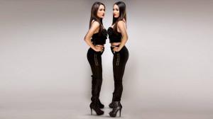 Wwe Divas Bella Twins
