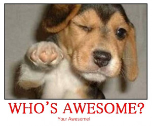 Your Awesome Your awesome