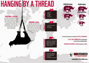 ... well known aspects of wildlife crime.And causing serious problems