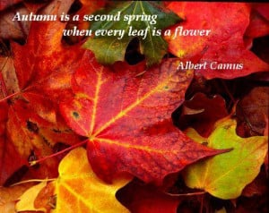 Inspirational Quotes for Autumn!