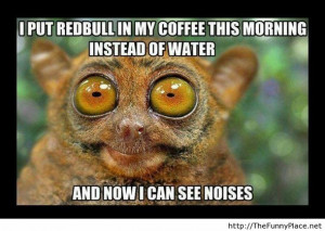 If you put redbull in coffee - Funny Pictures, Awesome Pictures, Funny ...