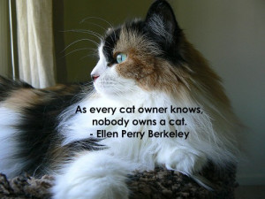 As every cat owner knows, nobody owns a cat.
