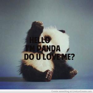 ... , do you love panda, love, panda animal cute, pretty, quote, quotes