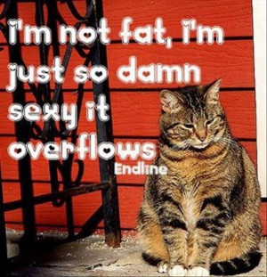 Not fat,I'm Just So Damn Sexy It Overflows ~ Funny Quote