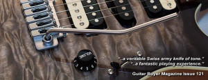 Guitar Quotes Evo pro - williams guitars