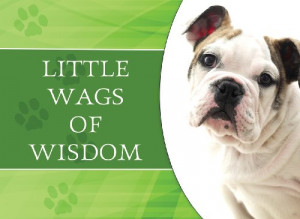 Little Wags Wisdom Life Book