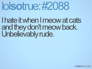 hate it when I meow at cats and they don't meow back. Unbelievably ...