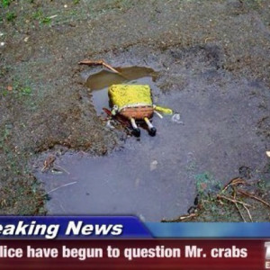 Crime... Mr. Crabs was a head case ...