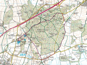 ray park orienteering map