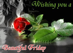 Happy weekend to all my friends , may it be filled with happiness ...