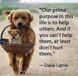 Help others - Dalai Lama