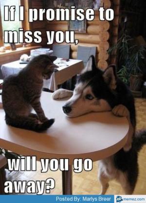 Miss You Quotes Cute Animal. QuotesGram