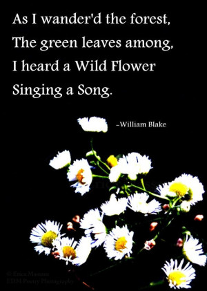 ... William Blake Poem | William Blake Quotes | Poetry and Prose
