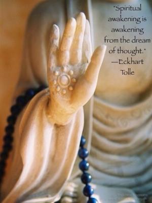 Spiritual Awakening is awakening from the dream of thought.