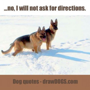 Witty dog quotes from man's best friend