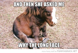 sad depressed horse animal foal why long face funny pics pictures pic ...